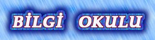 www.bilgiokulu.net